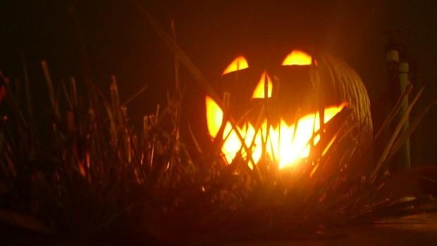 Harold-s-Jack-O-Lantern-2009-halloween-8883829-1744-1324