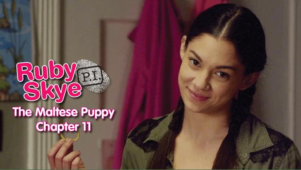 Maltese Puppy - Episode 11