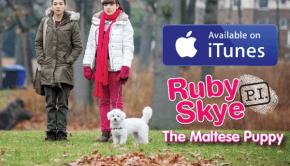 RSPI_TMP_logo_iTunes_600x420
