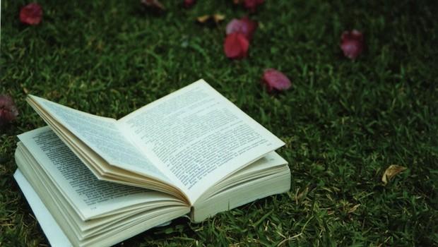 Summer Reading List 2012 | Ruby Skye P.I.