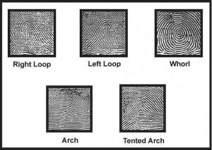 fingerprint1
