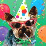 dog_birthday_party_pictures_2